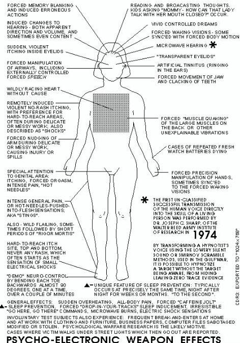 body diagram copy