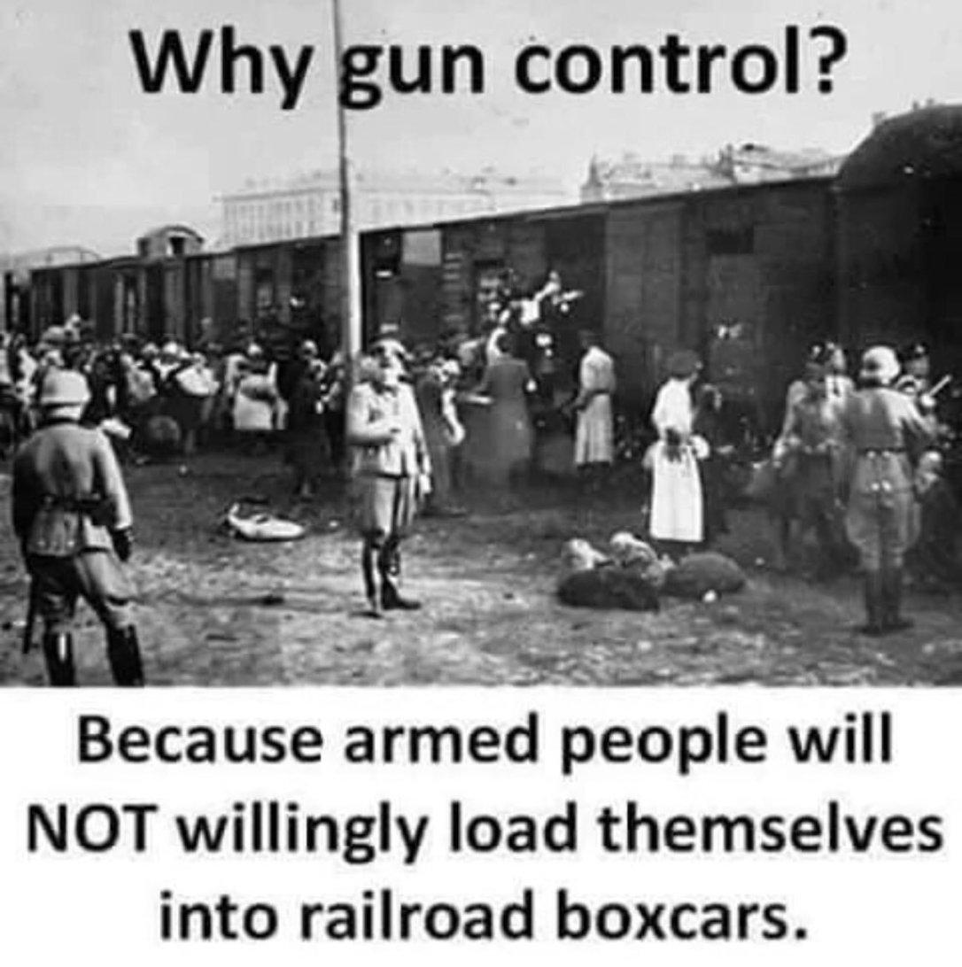 guncontrol700