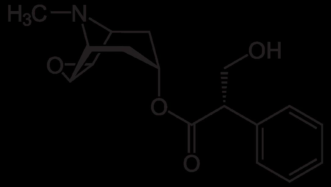scopolamine2