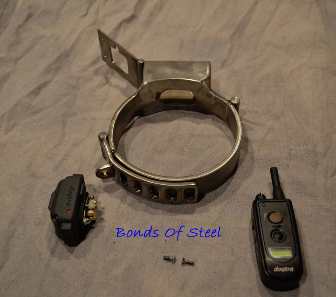 stainless.steel.shock.collar