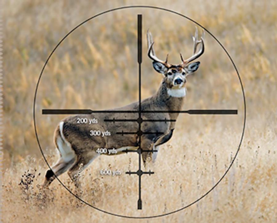 Scope-For-Deer-Hunting