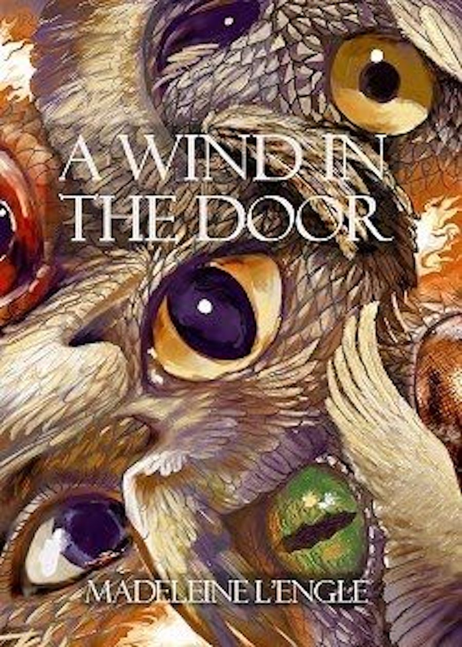 windinthedoor.eye