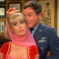 I DREAM OF JEANNIE:  THE FAKE MOON LANDING, MICROWAVE HARASSMENT, & SEXUAL SLAVERY
