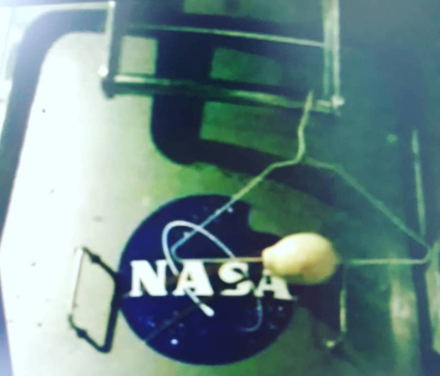 nasa lemon