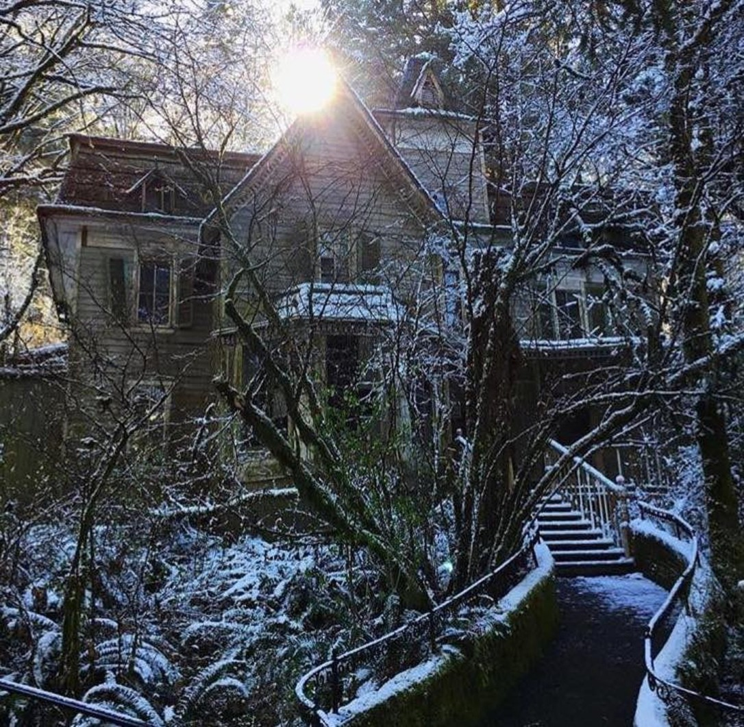 enchanted forest house