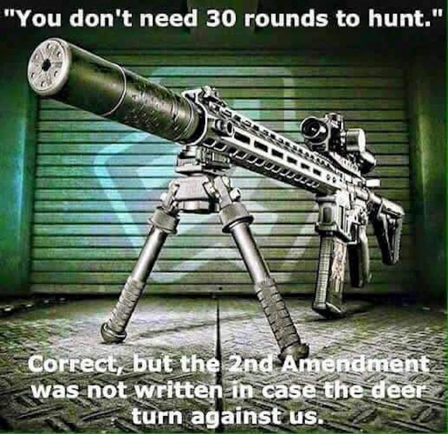 guncontrol999