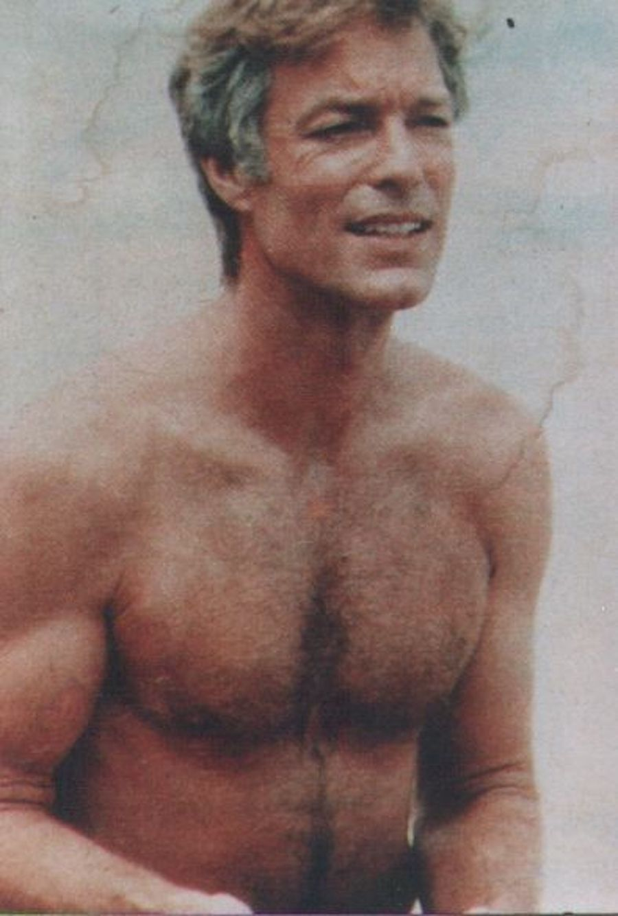 richard chamberlain shirtless