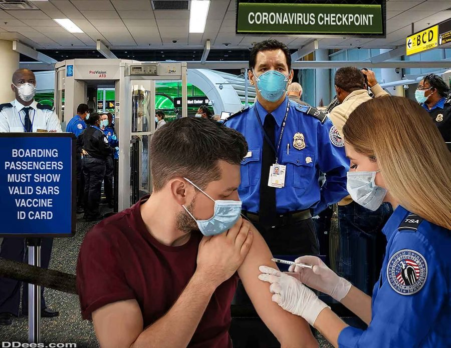 border vaccinations