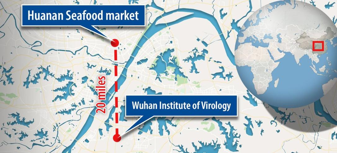 wuhan seafood market map