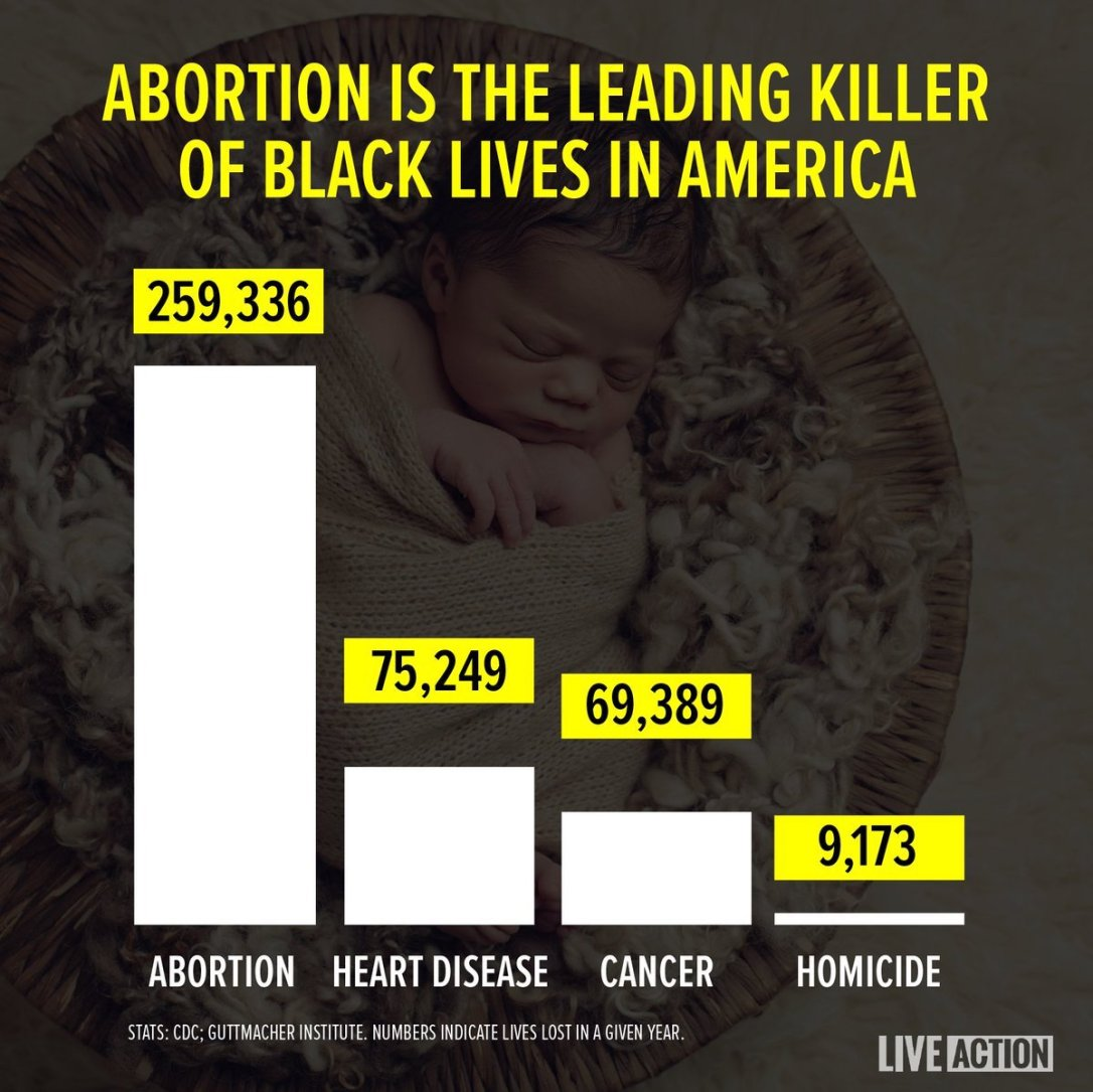 Abortion Racist Stats