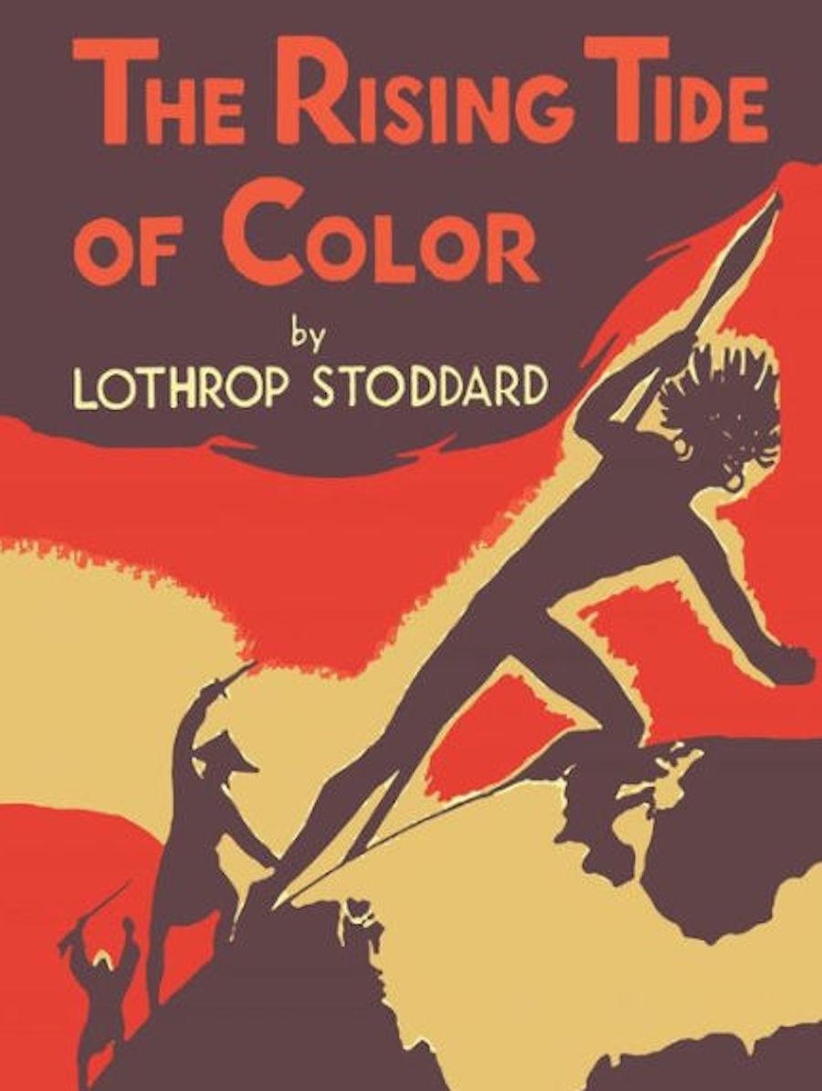 lothrop stoddard rising tide of color book