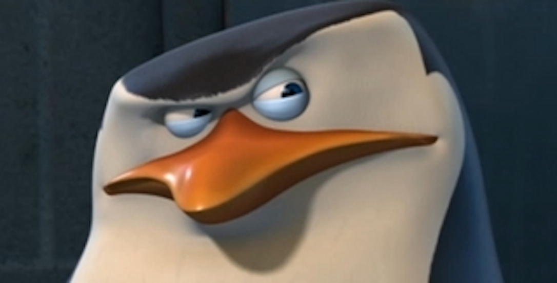 skipper suspicious