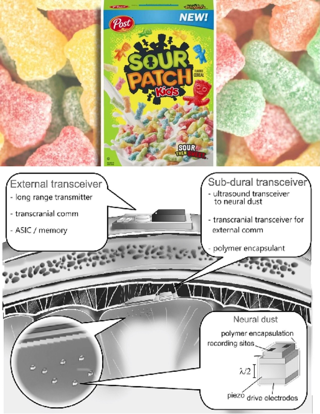 sour patch kids smart dust 2
